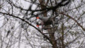 Vliegende hommel met camera tussen takken stock video
