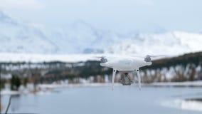 Vliegende hommel op de achtergrond van een sneeuw behandeld bos stock footage
