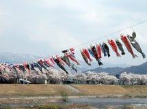 Vliegende karpers in een bergenvallei Royalty-vrije Stock Afbeeldingen
