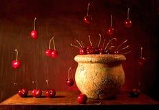 Vliegende Kersen royalty-vrije stock foto