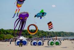 Vliegende kleurrijke vliegers bij de vlieger van Michigan fest stock fotografie