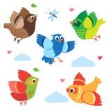 Vliegende Kleurrijke Vogels Vectorvogels Vastgestelde Beeldverhaalillustratie Stock Afbeeldingen