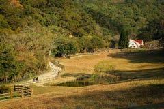 Vliegende koeboerderij royalty-vrije stock fotografie