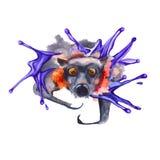 Vliegende muis Halloween Geïsoleerde De illustratie van de waterverf Royalty-vrije Stock Foto's