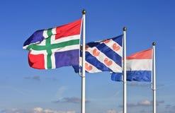 Vliegende Nederlandse vlaggen Stock Afbeelding