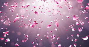 Vliegende Romantische Rode Roze Rose Sakura Flower Petals Falling Background-Lijn 4k stock illustratie