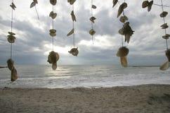 Vliegende shells Royalty-vrije Stock Fotografie