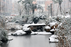 Vliegende sneeuw Stock Foto