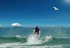 Vliegende straalski & vogel aan tropische zon Stock Foto's