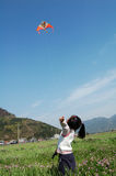Vliegende vlieger Stock Foto