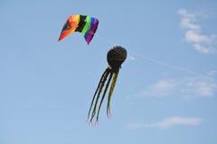 Vliegende Vlieger Royalty-vrije Stock Afbeeldingen