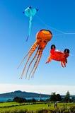 Vliegende vliegers Stock Foto
