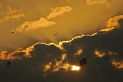 Vliegende vliegers in de hemel in India Wolken met gouden voering royalty-vrije stock foto's
