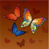 Vliegende vlinders Royalty-vrije Stock Foto's