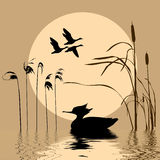 Vliegende vogels stock illustratie