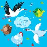Vliegende vogels De vectorillustratie van het beeldverhaal Stock Foto's