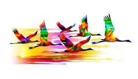 Vliegende vogels Kleurrijke kranen Stock Afbeeldingen