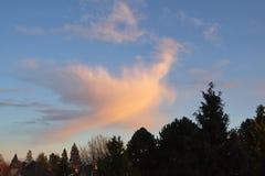 Vliegende wolk Stock Afbeeldingen