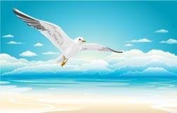 Vliegende zeemeeuw op Strand Stock Foto