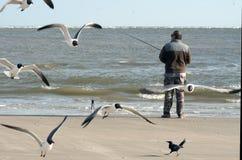 Vliegende zeemeeuwen, het Lachen atricilla van Meeuwlarus en een visser met een hengel op de achtergrond van het overzees Royalty-vrije Stock Foto's