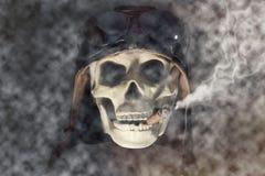 Vliegenier Skull Stock Foto's