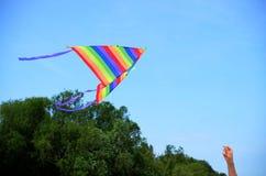 Vlieger in de hemel Royalty-vrije Stock Foto's