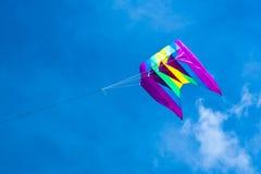 Vlieger die op de blauwe hemel vliegen Royalty-vrije Stock Foto's