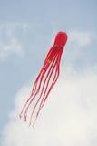 Vlieger die - vorm van octopus vliegen Royalty-vrije Stock Foto