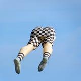 Vliegerfestival Royalty-vrije Stock Afbeelding