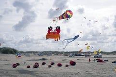 Vliegerfestival Stock Afbeelding