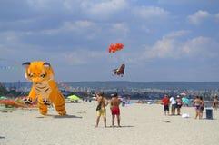 Vliegerfestival over het strand Royalty-vrije Stock Foto