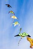 Vliegers in de blauwe hemel Stock Foto's