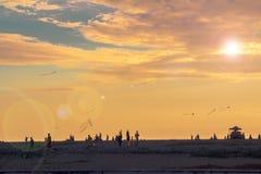 Vliegers in de hemel Royalty-vrije Stock Foto's