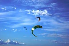Vliegers in de hemelen Stock Afbeelding