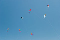 Vliegers op de blauwe hemelachtergrond Stock Afbeeldingen