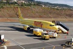 Vliegtuig Boeing 737-800 Stock Afbeeldingen