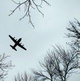 Vliegtuig dat boven de bomen vliegt Royalty-vrije Stock Foto