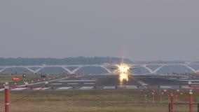 Vliegtuig die op baan met vogel landen die overdwars vliegen stock videobeelden