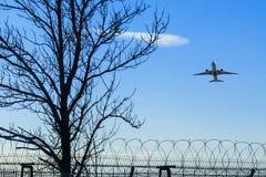 Vliegtuig die over het prikkeldraad en de boom van start gaan Stock Afbeeldingen