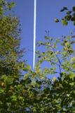 Vliegtuig door de bomen Stock Fotografie