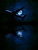 Vliegtuig en de maan over het overzees Stock Fotografie