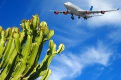 Vliegtuig en tropische bestemming stock foto's