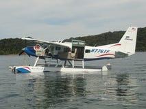 Vliegtuig op Dale Hollow Lake in Tennessee Stock Afbeeldingen