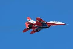 Vliegtuig van Swifts (Strizhi) Royalty-vrije Stock Afbeelding