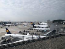 Vliegtuigen bij luchthaven die - in Frankfurt landen stock fotografie