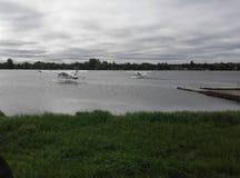 Vliegtuigen over water Stock Fotografie