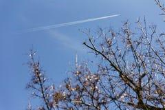 Vliegtuiggas over de blauwe hemel met takken in de voorgrond in Sapporo in Hokkaido, Japan Royalty-vrije Stock Afbeeldingen