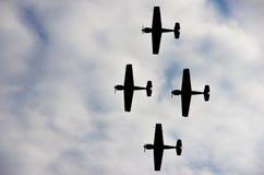 Vliegtuigprestaties Stock Afbeelding