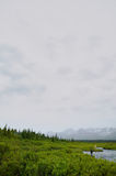 Vliegvisser die op een verre kreek vissen Van Alaska royalty-vrije stock foto's