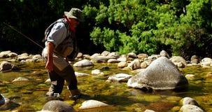 Vliegvisser die vissen zoeken in ondiep rivierwater stock videobeelden